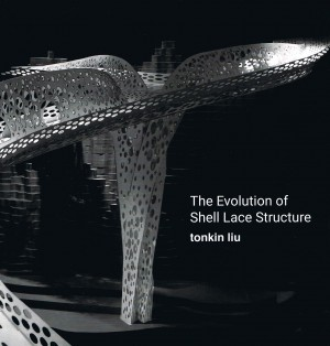 Evolution of Shell Lace Structure