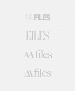 AA Files X